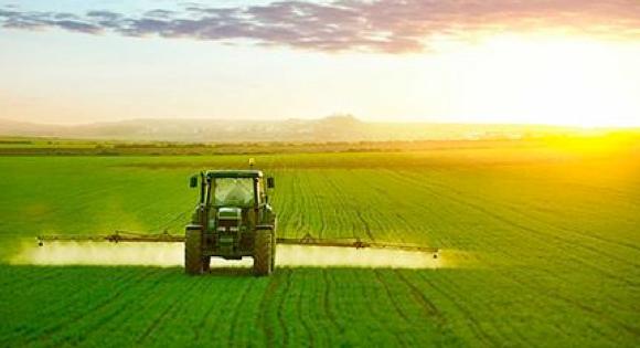 PSR Sicilia, a Castelvetrano incontro sul bando 40 milioni di fondi Ue per le imprese agricole. Parteciperanno Bandiera e Cartabellotta