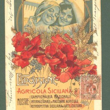 Quell' Esposizione Agricola Regionale Palermo- Marsala 1902-1903 fortemente voluta da Vito Rubino fondatore del Vomere