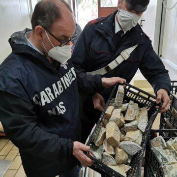 Alimenti scaduti ed in cattivo stato di conservazione all'interno di un caseificio di Paceco: i Carabinieri denunciano il legale responsabile dell'attività