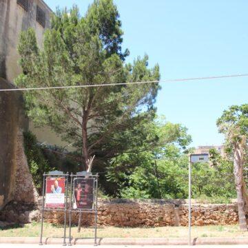 L'amministrazione Grillo richiede la gestione del fossato punico