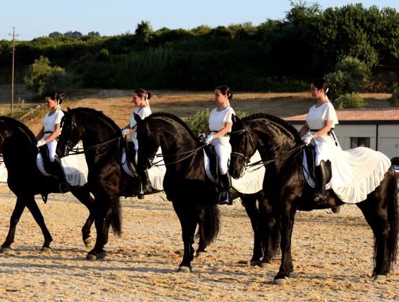 Terza Fiera Mediterranea del cavallo. Un pomeriggio immersi nella cultura equestre