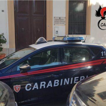 Alcamo: bimbo aggredito da un rottweiler. Denunciato dai Carabinieri il proprietario